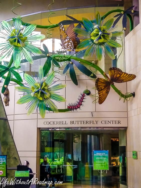 Entrance to Cockrell Butterfly Center in Houston, Texas