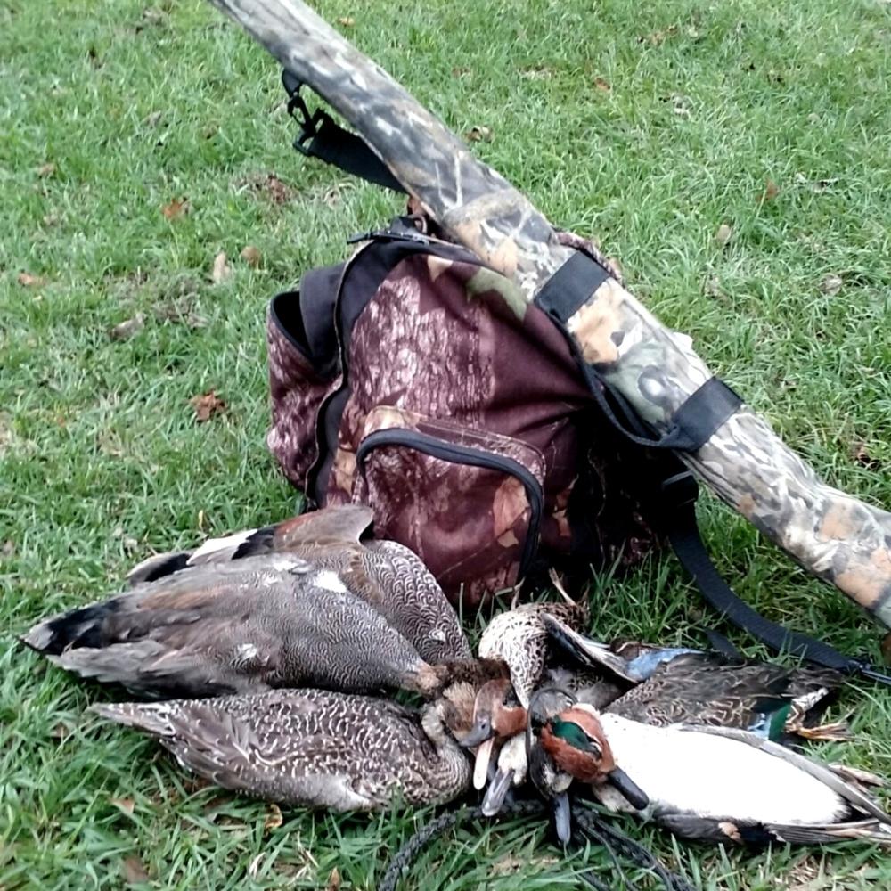 It's Duck Season – A Trip Down Memory Lane