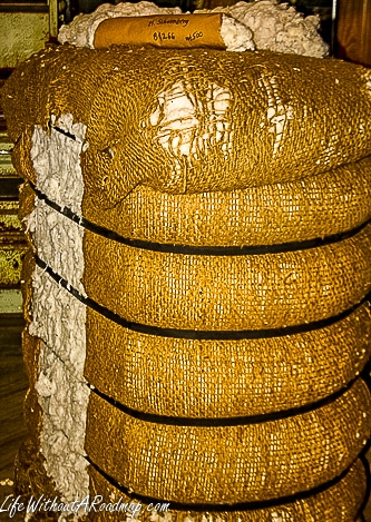 Processed bale of raw cotton