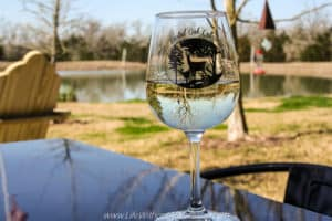 Glass of wine at Busted Oak Cellars