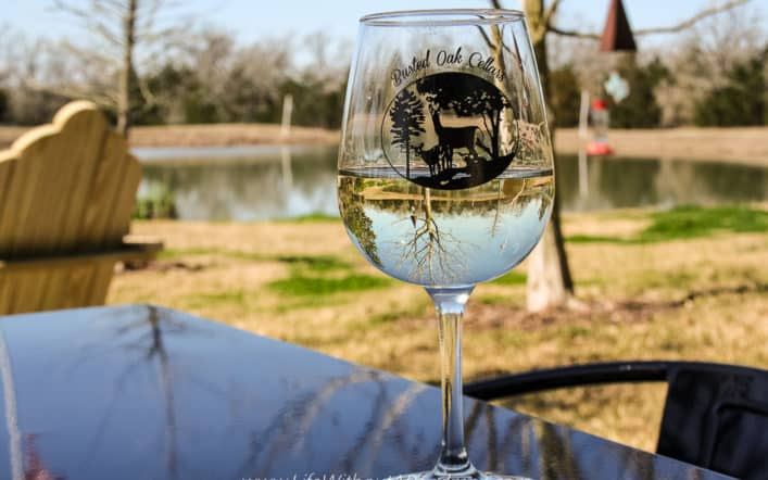 Texas Road Trip – Wine Tasting And A Show At Busted Oak Cellars